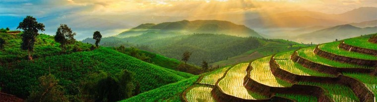 terraced-rice-field-in-chiangmai-thailand-featured-image