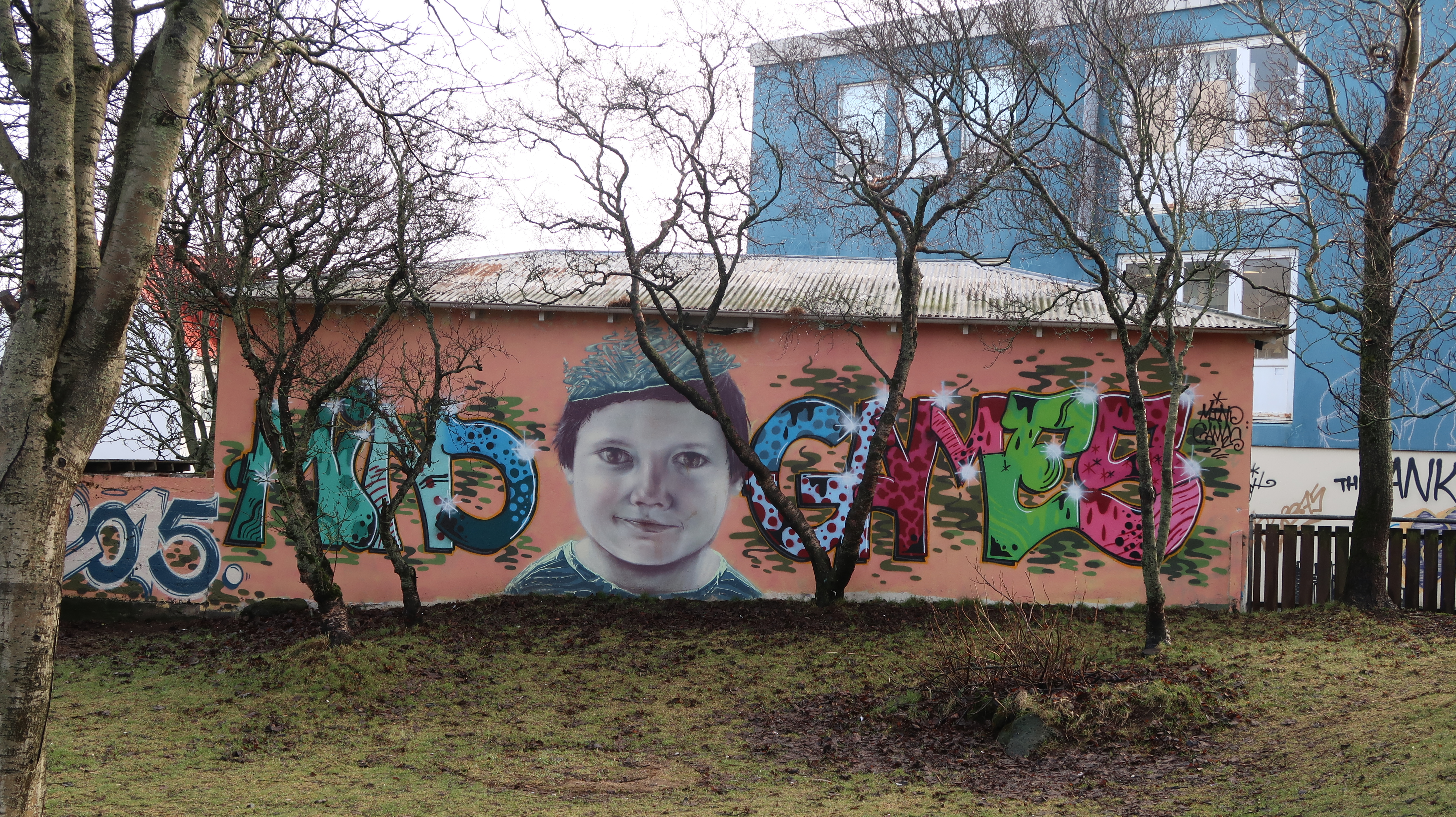 phycological street art reykjavik