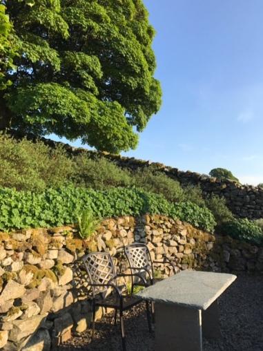 2017-06-10-PHOTO-00017577