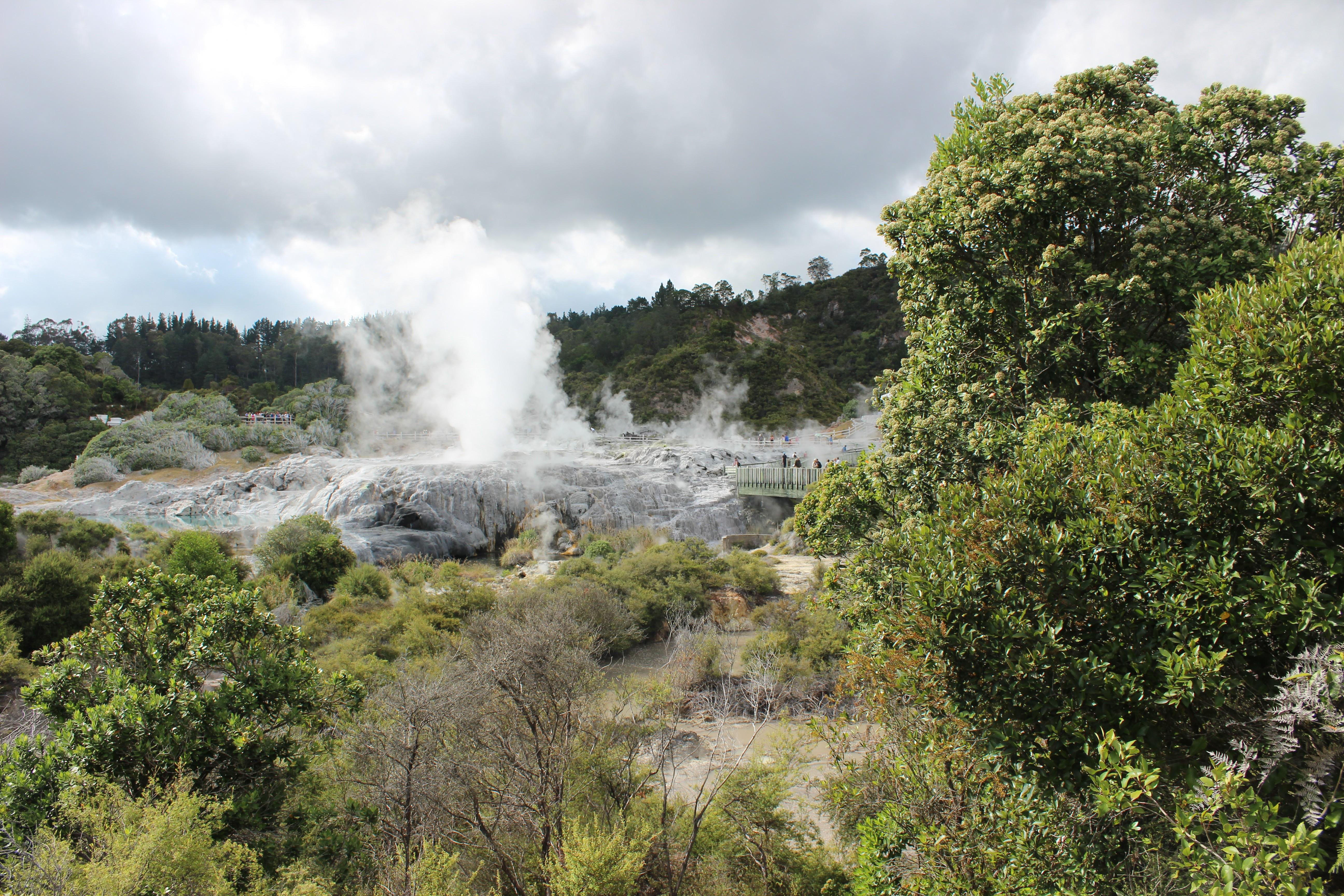 Pohutu Geyser, Whakarewarewa Geothermal Valley
